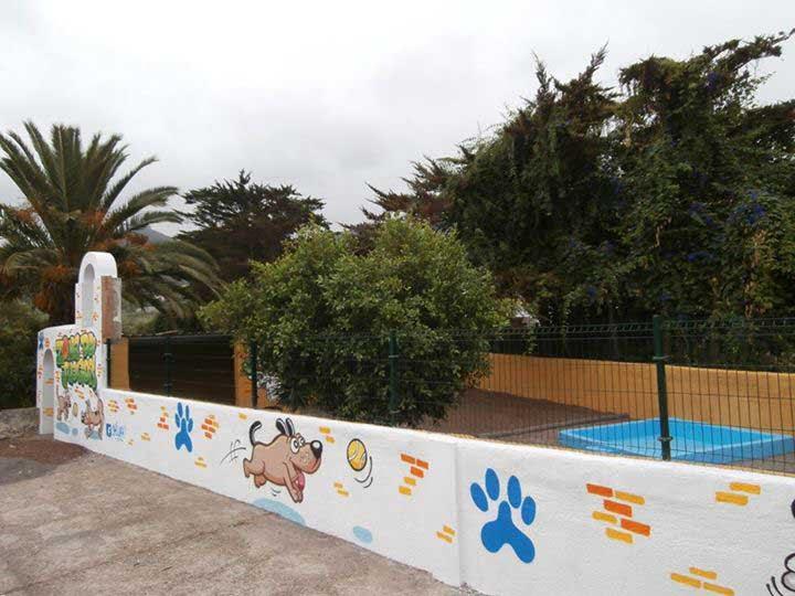 marina dog tenerife instalaciones galeria (13)