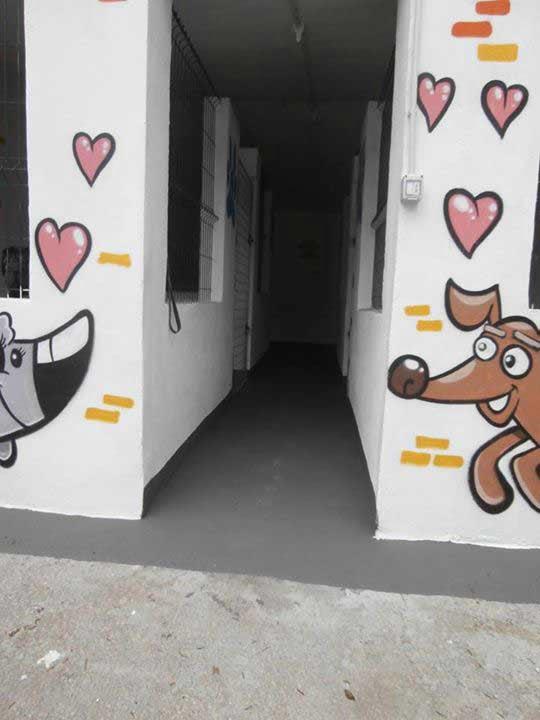 marina dog tenerife instalaciones galeria (8)